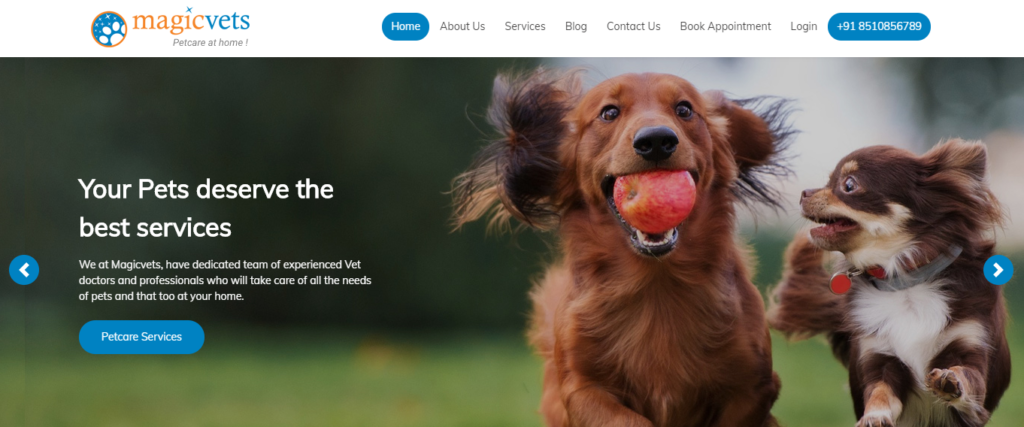 Magicvets petcare Webicules Technology